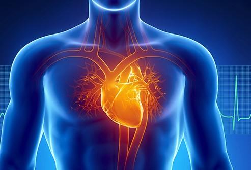 Keto Diet Heart Disease